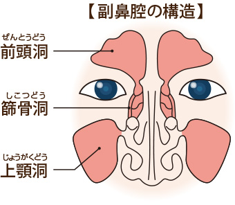 の 痛い 鼻 中